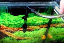Фільтр для акваріума