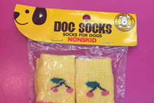 Шкарпетки для собак
